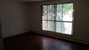 1 Bedroom Apartment - Minutes from U of A !