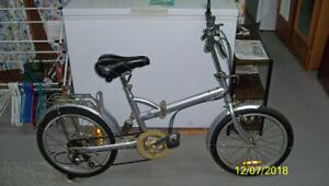 Easy Cruiser Adult Folding bike