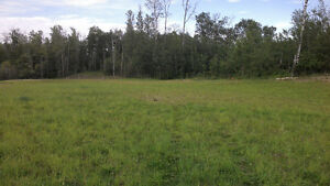 10 Acre Parcel For Sale – NOT IN SUBDIVISION
