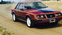 Very rare 1983 Mustang Coupe  Yes 5.0L