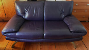 Couch and Sofa Set