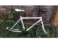 Mens woodworm mountain bike