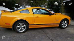 2007 Ford Mustang GT with hood scoop Coupe (2 door)
