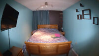 Guest RM w/Private Bath - Cls to  Downtown,Airport,SAIT,U of C