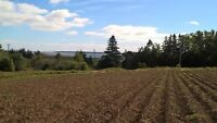 Waterview 35 acre parcel -  mixed farm and wooded