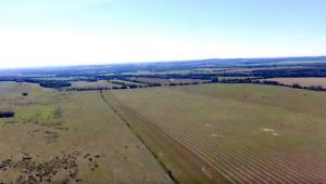 311 Acres of Productive Farmland Near Goodlow, BC