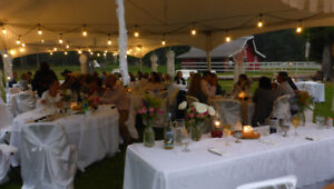 Wedding Decorations, Special Events, Banquet - White Tablecloths