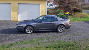 2004 Ford Mustang GT Coupe (2 door) 5 speed