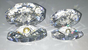 ASFOUR Diamond Crystal Clams with Pearl Pbo 30%