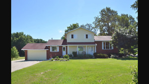 House with apartment and Barn for rent