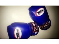 Twins large boys boxing gloves