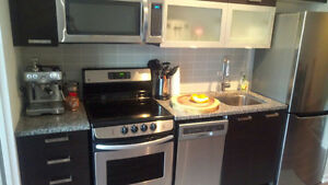 New Queen West Condo For Rent - option to have it FURNISHED