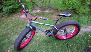 Single Speed Fat Bike