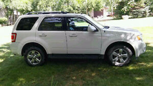 2011 Ford Escape LTD SUV, Crossover