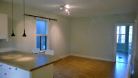Large and Bright 1 Bed Apartment, Steps from Danforth!