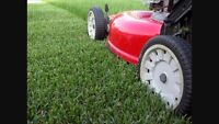 Affordable lawn care services, $30 BOOK NOW