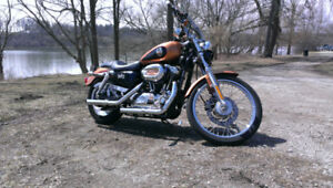 REDUCED !!!    2008  Custom XL1200C Sportster