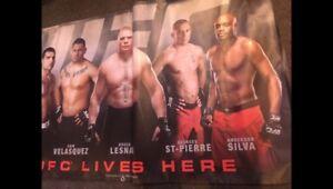 Official UFC Banner
