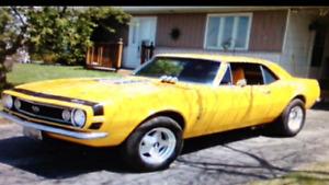 """1967 Camaro """"Vett Yellow"""""""