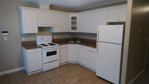 Two Bedroom Basement Suite For Rent in North Bby / Sperling