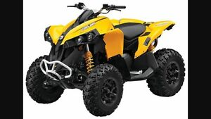 Wanted can AM renegade 800 or 1000