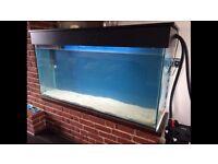 Xx large aquarium
