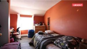 Short term Rental- 1 bedroom in 3 bdrm apt. Near Lakehead Uni.