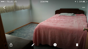 ROOM for rent in Edam Sk.