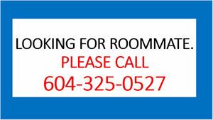 Looking for Roommate (commercial Broadway Skytrain) (Vancouver)