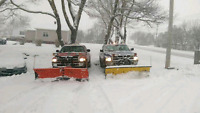 Plowing in cole harbour