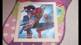Spiderman framed picture.