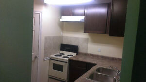 2 basement rooms available for rent
