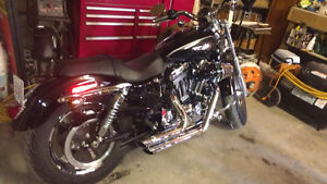 2013 I have 2 Harley Davidson 1200 cc for sale