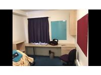Student Accommodation, En Suite (November and December Free)