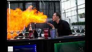 Mobile bartending and portable bars for business functions. Moose Jaw Regina Area image 5