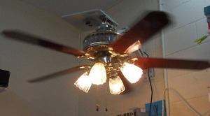 """SMC Deluxe 52"""" 5-Blade Ceiling Fan with Lights"""
