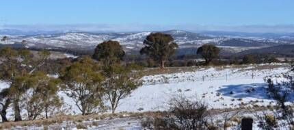 REDUCED 300 acres of high country bush & grassland near Cooma NSW