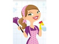 Queen of Clean -Domestic Cleaning Services