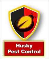 Guaranteed pest removal at affordable price call 647-501-0074