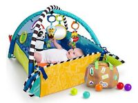 Baby Einstein gym and play mat
