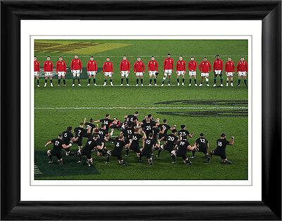 "British Lions 16""x12"" Premium Framed Print"