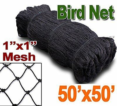 Bird Netting 50ft X 50ft Netting For Bird Poultry Avaiary Game Pens 1 Hole 248