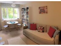 Newly Refurbished Studio Flat in lovely location