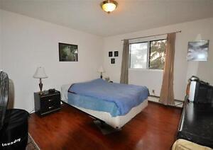 1 Bed 1 Bath South Edmonton Apartment Edmonton Edmonton Area image 6