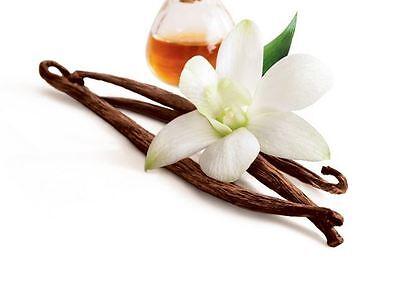 French Vanilla Flavor Oil - FLAVOR OIL for LIP BALM 1/2 oz *** FRENCH VANILLA FLAVOR OIL