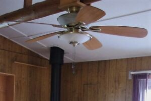 Beautiful 42 inch Alliance Ceiling Fan with dual lights