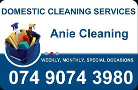 Reliable Domestic Cleaner in Nottingham