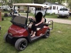 GOLF CART STOLEN TECUMSEH/S. CAMERON AREA
