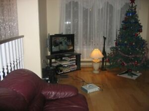 Large One bedroom basement apartment in a house for rent