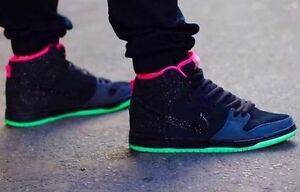 "Nike Dunk SB ""Northern Lights"" DS Size 10"